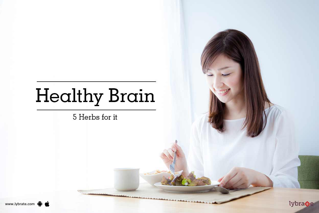 Healthy Brain - 5 Herbs For It!