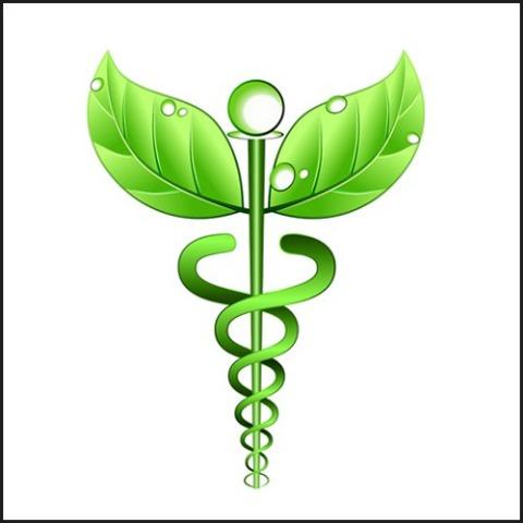Ayurvedic herbal health care center, New Delhi
