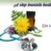 DH Homeopathic Health Centre Pune