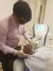 Dr. Govind S Mittal  - Dermatologist, Bangalore