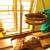 Ayurvedic Herbal Health Care Center Image 3