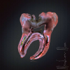 SHIFA ORAL CARE DENTAL CLINIC. Image 2