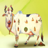Jain's Cow Urine Therapy Health Clinic Image 3