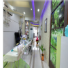 Sapphire Dental Hospital & Orthodontic Centre Image 6