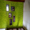 Dr. Bela Homeopathic Clinic  Image 5