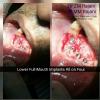 St.Mother Teresa Dental Hos Image 9