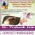 Dr. Prakash Jain Clinic,  | Lybrate.com