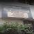 City Homeo Clinic,  | Lybrate.com
