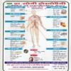 Dr.Soni'S Homeopathy Clinics & Diagnostic Center Image 1