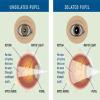 A2Z Eye Care Centre Image 1