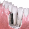 Dentex Prakriti Clinic Image 1