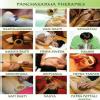 Shree Vishwavallabh Ayurvedic Panchakarma & Skin Care Center Image 5